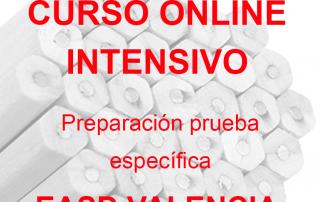 Arte-Casellas.-Curso-online-intensivo.-EASD-Valencia.-preparacion-prueba-especifica