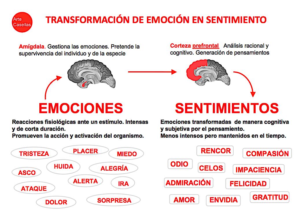 Neurodiseño.-Arte-Casellas.-Tipos-de-diseño.-Definición.-Caracteristicas-ejemplos-1-
